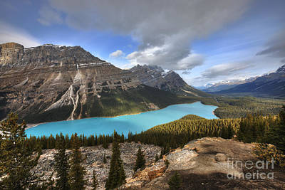 Banff Wall Art - Photograph - Peyto Lake Banff by Dan Jurak