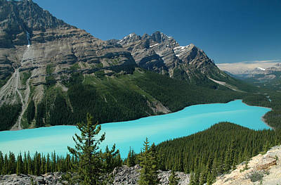 Photograph - Peyto Lake. Banff National Park In Alberta. by Rob Huntley