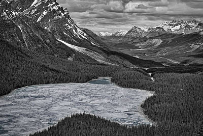 Photograph - Peyto Lake - Black And White by Stuart Litoff