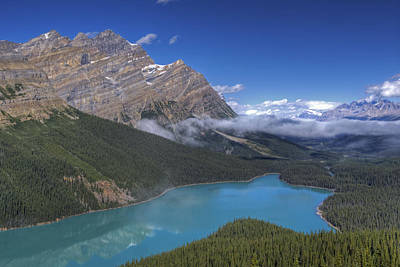 Peyto Lake Art Print by Darlene Bushue