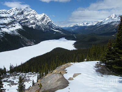 Photograph - Peyto Lake - Icefields Parkway - Canada by Phil Banks