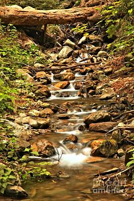 Photograph - Pfeiffer Burns Waterfall Creek by Adam Jewell