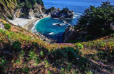 Photograph - Mcway Falls by Chuck Jason