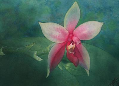 Painting - Phalaenopsis Bellina by Robin Street-Morris