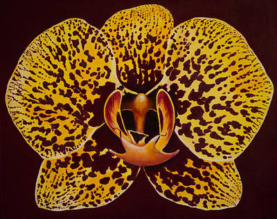 Painting - Phalaenopsis Close Up by Nancy Lauby