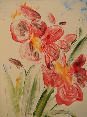 Phalaenopsis In Pink Art Print by Valerie Lynch