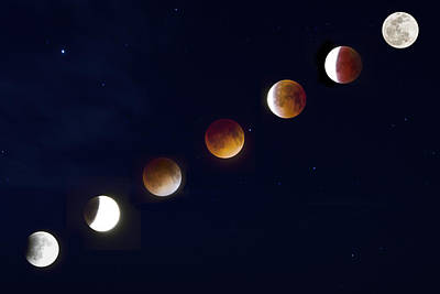 Photograph - Phases Of The Lunar Eclipse by Mark Andrew Thomas