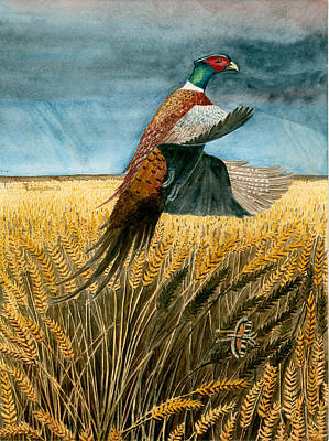 Painting - Pheasant Rising by Timothy Livingston