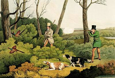 English Setter Painting - Pheasant Shootin by Henry Thomas Alken