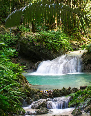 Photograph - Philippine Waterfall by Avian Resources