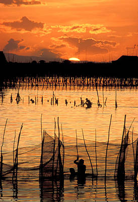 Wade Fishing Photograph - Philippines Manila Fishing by Anonymous