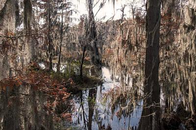 Phinizy Swamp Nature Park #2 Original by Paul Cannon