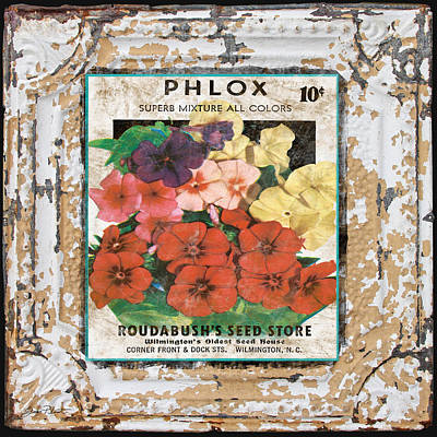Phlox On Vintage Tin Art Print by Jean Plout