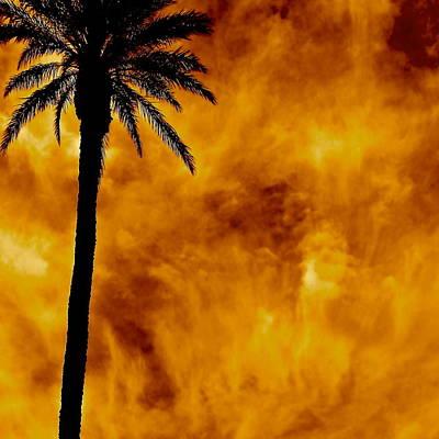 Wall Art - Photograph - Phoenix Inferno by Michael Jewel Haley