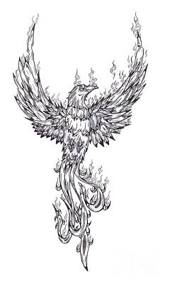 Phoenix Bird Drawing - Phoenix by Matt Sutherland