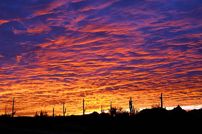 Phoenix Photograph - Phoenix Sunrise by Jill Reger