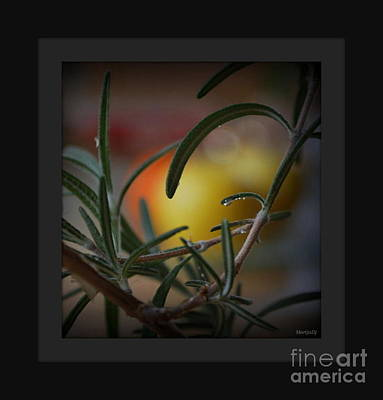 Photo For Your Soul... Art Print by Marija Djedovic
