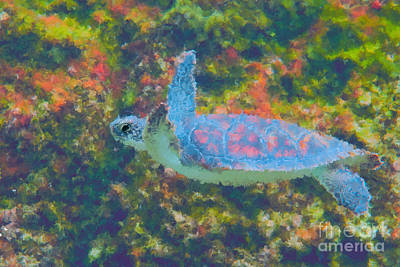 Photo Painting Of Sea Turtle Art Print by Dan Friend