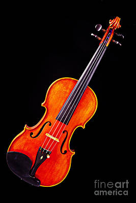 Photograph - Photograph Of A Complete Viola Violin In Color 3368.02 by M K  Miller