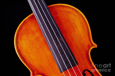 Photograph - Photograph Of A Upper Body Viola Violin In Color 3369.02 by M K  Miller