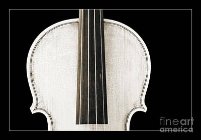 Photograph - Photograph Or Picture Viola Violin Body In Sepia 3367.03 by M K  Miller