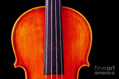 Photograph - Photograph Or Picture Violin Viola Body In Color 3367.02 by M K  Miller