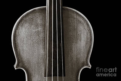 Photograph - Photograph Or Picture Violin Viola Body In Sepia 3367.01 by M K  Miller