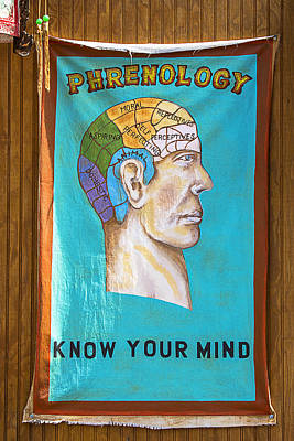 Psychiatry Photograph - Phrenology by Garry Gay