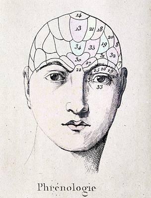 Phrenology Head Chart Art Print