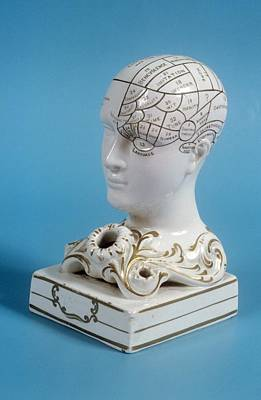 Quack Photograph - Phrenology Ink Well by Science Photo Library