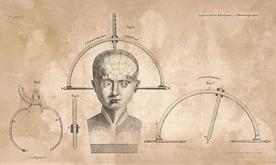 Phrenology Measuring Equipment Print by King's College London