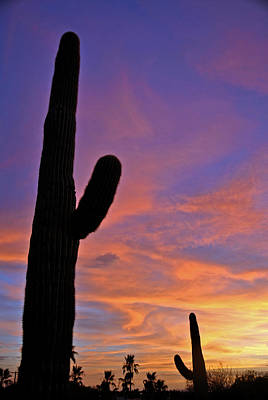 Phx July 2014 Sunsets 3 Art Print