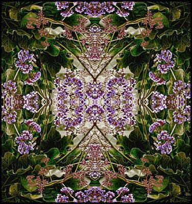 Photograph - Phyto-photo 2 by Douglas MooreZart