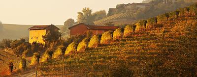 Photograph - Piamonte-piedmonte Italy by John Galbo