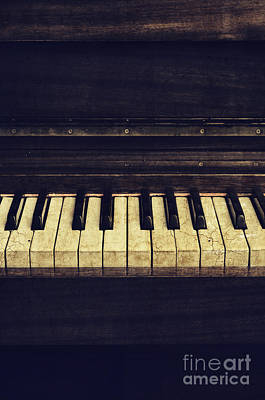 Keyboards Photograph - Piano by Jelena Jovanovic
