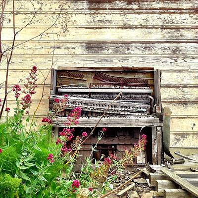 Vintage Photograph - Piano by Julie Gebhardt
