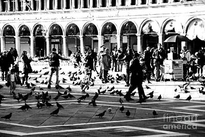Photograph - Piazza San Marco Frolic by Jacqueline M Lewis