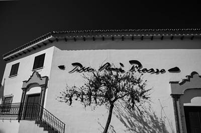Photograph - Light And Shadows. Benalmadena. Black And White by Jenny Rainbow