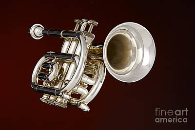 Photograph - Piccolo Trumpet Music Instrument In Color 3020.2 by M K Miller