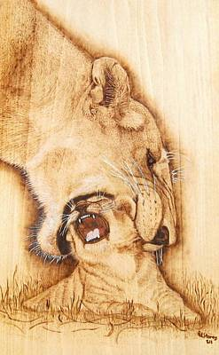 Pyrography On Wood Mixed Media - Pick Me Up by Roger Storey