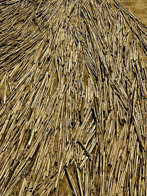 Photograph - Pick-up Sticks by Jean Wright