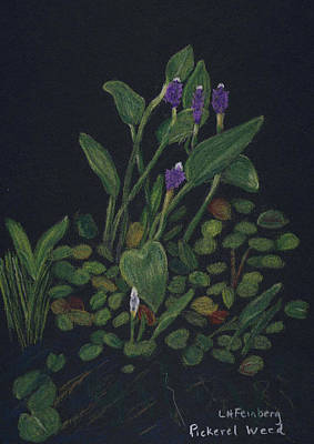 Painting - Pickerel Weed by Linda Feinberg