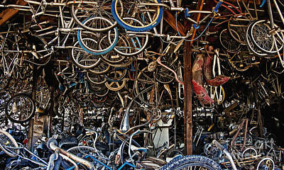 Photograph - Pickers Place Bicycle Bliss by Lee Craig