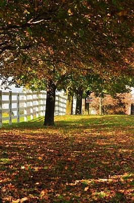 Photograph - Picket Fence by Puzzles Shum