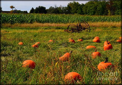 Indiana Photograph - Pickin A Pumpkin by Amy Lucid