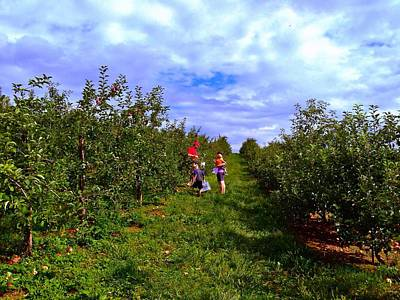 Photograph - Picking Apples by Chris Montcalmo