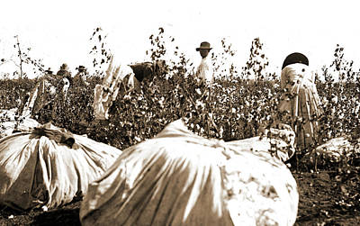 Picking Cotton, Jackson, William Henry, 1843-1942 Art Print by Litz Collection
