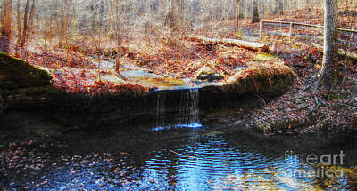Photograph - Pickle Springs Natural Springs by Peggy Franz