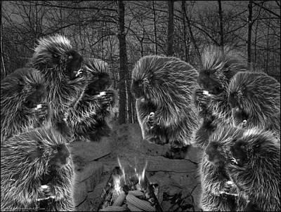 Porcupine Photograph - Picky Eaters In The Moonlight by LeeAnn McLaneGoetz McLaneGoetzStudioLLCcom