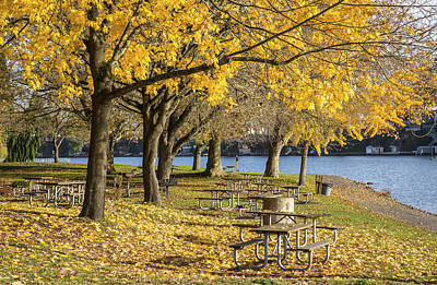 Picnic Area Blue Lake Park Oregon. Print by Gino Rigucci